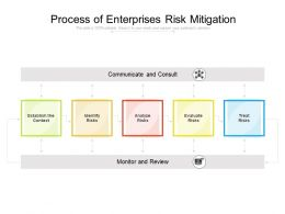 Process Of Enterprises Risk Mitigation