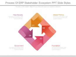 Process Of Erp Stakeholder Ecosystem Ppt Slide Styles