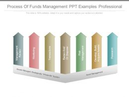 Process Of Funds Management Ppt Examples Professional