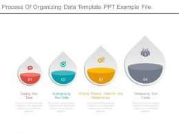 Process Of Organizing Data Template Ppt Example File