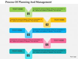 Process Of Planning And Management Flat Powerpoint Design