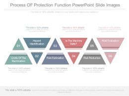 process_of_protection_function_powerpoint_slide_images_Slide01