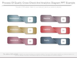 Process Of Quality Cross Check And Analytics Diagram Ppt Example