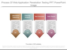Process Of Web Application Penetration Testing Ppt Powerpoint Image