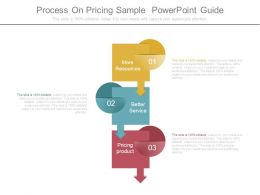 Process On Pricing Sample Powerpoint Guide