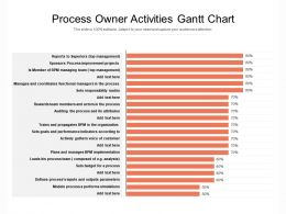 Process Owner Activities Gantt Chart