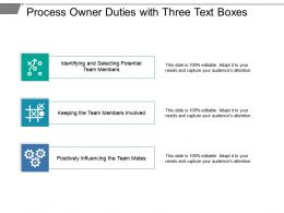 Process Owner Duties With Three Text Boxes