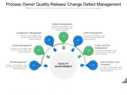 Process Owner Quality Release Change Defect Management