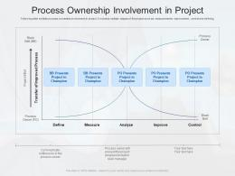 Process Ownership Involvement In Project