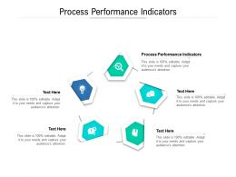 Process Performance Indicators Ppt Powerpoint Presentation Summary Template Cpb