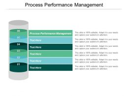 Process Performance Management Ppt Powerpoint Presentation Icon Infographic Template Cpb