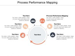 Process Performance Mapping Ppt Powerpoint Presentation Styles Structure Cpb