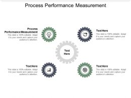 Process Performance Measurement Ppt Powerpoint Presentation Gallery Guidelines Cpb