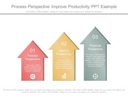 Process Perspective Improve Productivity Ppt Example