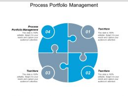 Process Portfolio Management Ppt Powerpoint Presentation Model Background Designs Cpb
