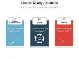 Process Quality Assurance Ppt Powerpoint Presentation Icon Slide Portrait Cpb