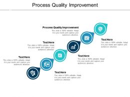 Process Quality Improvement Ppt Powerpoint Presentation Styles Infographic Template Cpb