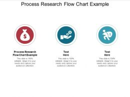 Process Research Flow Chart Example Ppt Powerpoint Presentation Icon Portfolio Cpb