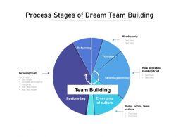 Process Stages Of Dream Team Building