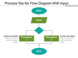 Process Yes No Flow Diagram With Input