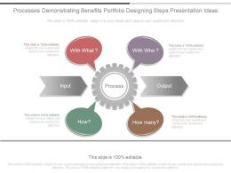 Processes Demonstrating Benefits Portfolio Designing Steps Presentation Ideas