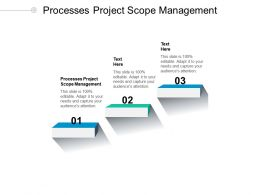 Processes Project Scope Management Ppt Powerpoint Presentation Gallery Layout Ideas Cpb