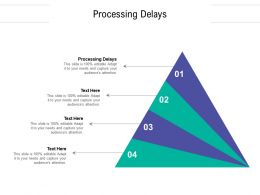 Processing Delays Ppt Powerpoint Presentation Professional Maker Cpb