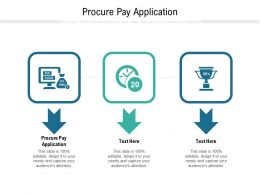 Procure Pay Application Ppt Powerpoint Presentation Layouts Sample Cpb