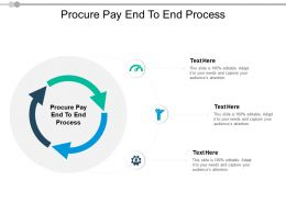 Procure Pay End To End Process Ppt Powerpoint Presentation Show Guide Cpb