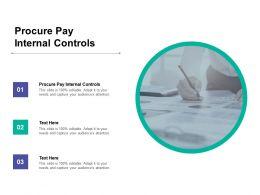 Procure Pay Internal Controls Ppt Powerpoint Presentation Design Templates Cpb