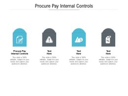 Procure Pay Internal Controls Ppt Powerpoint Presentation Show Background Images Cpb