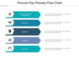 Procure Pay Process Flow Chart Ppt Powerpoint Presentation Pictures Designs Cpb