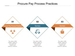 Procure Pay Process Practices Ppt Powerpoint Presentation Icon Graphics Cpb