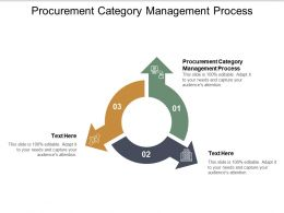 Procurement Category Management Process Ppt Powerpoint Presentation Show Cpb