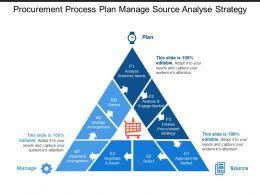 Procurement Process Plan Manage Source Analyse Strategy