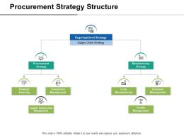 Procurement Strategy Structure Manufacturing Strategy Ppt Slides Graphics Download