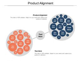 Product Alignment Ppt Powerpoint Presentation Gallery Professional Cpb
