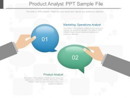 Product Analyst Ppt Sample File