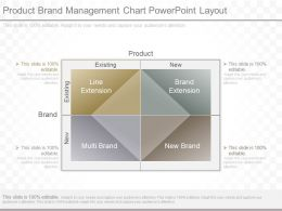 Product Brand Management Chart Powerpoint Layout
