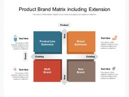 Product Brand Matrix Including Extension