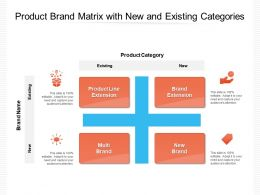 Product Brand Matrix With New And Existing Categories