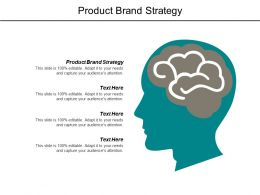 Product Brand Strategy Ppt Powerpoint Presentation File Slides Cpb