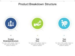 Product Breakdown Structure Ppt Powerpoint Presentation Outline Gallery Cpb