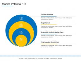 Product Channel Segmentation Market Potential Ppt Infographics