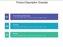 Product Description Example Ppt Powerpoint Presentation Ideas Visual Aids Cpb