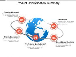 Product Diversification Summary