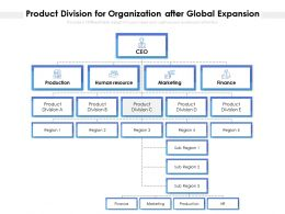 Product Division For Organization After Global Expansion
