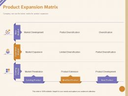 Product Expansion Matrix Diversification Ppt Powerpoint Presentation Show Display