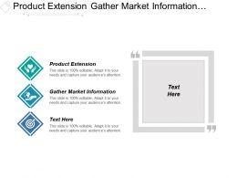product_extension_gather_market_information_discipline_business_architecture_Slide01