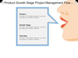 Product Growth Stage Project Management Flow Chart Diagram